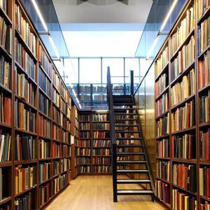 Библиотеки Камызяка